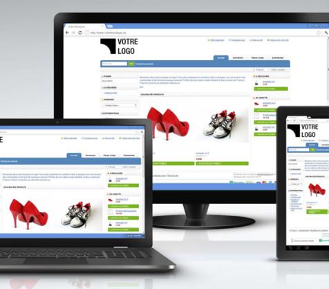 Webshop, webáruház bérlés
